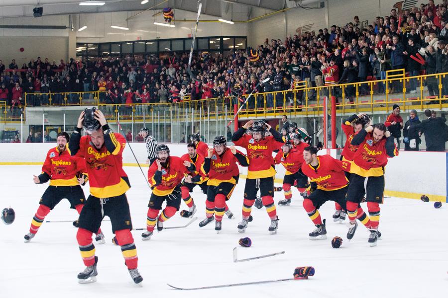 hockey team excited on ice