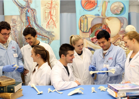Students in lab working